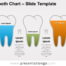 Tooth Chart Slide Template