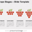 Free Grape Stages for PowerPoint