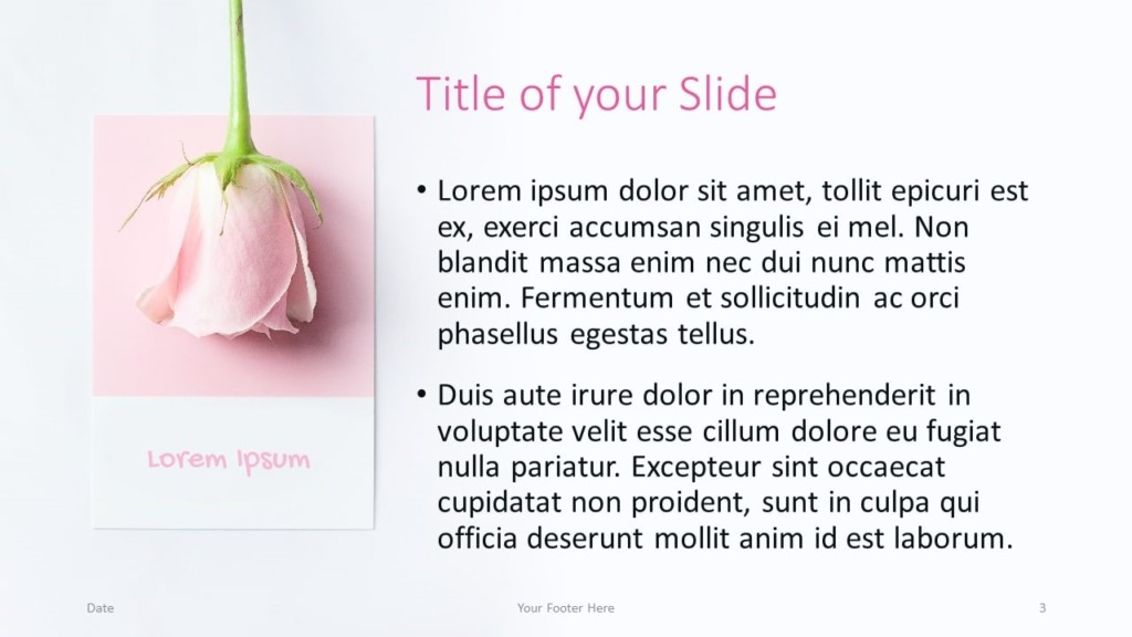 Free Color Cards and Flowers Template for Google Slides – Title and Content Slide (Variant 2)