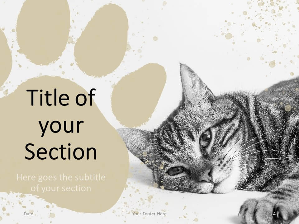 Free Pets Template for PowerPoint – Section Slide (Variant 1)