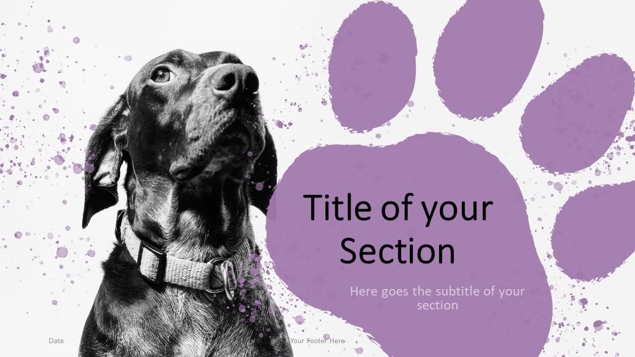 Free Pets Template for Google Slides – Section Slide (Variant 2)