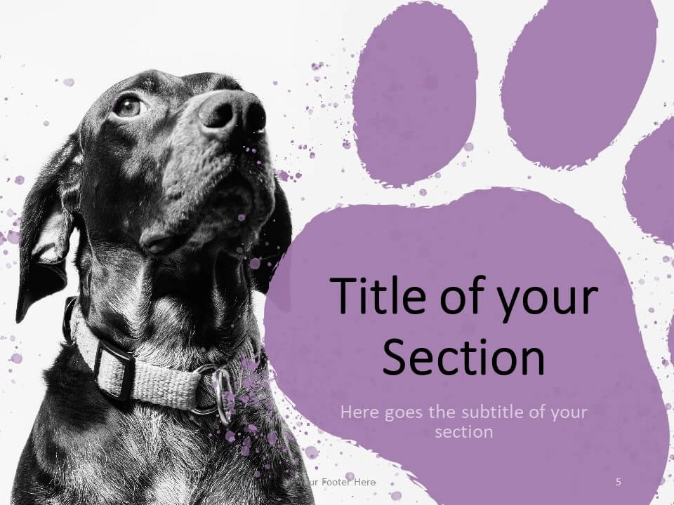 Free Pets Template for PowerPoint – Section Slide (Variant 2)