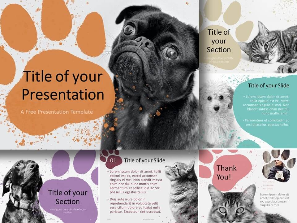 Free Pets Template for PowerPoint and Google Slides