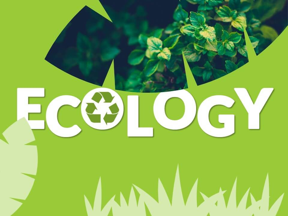 Free ECOLOGY Template for Google Slides - Cover Slide